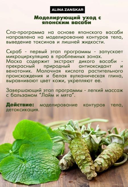 васаби НОВИНКА1